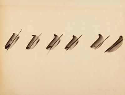 JOAQUIN CHANCHO (Riudoms, Tarragona, 1943).