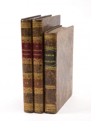 Dos libros de temática religiosa. 2+1 vol