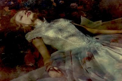 Viet Ha Tran (Vietnam, 1981) Take me to your dreams Ophelia I.