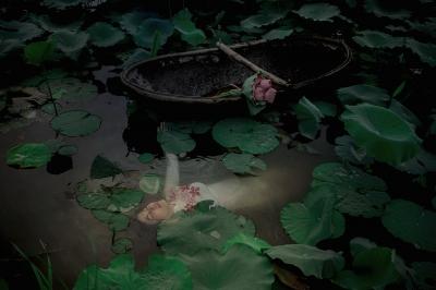 Viet Ha Tran (Vietnam, 1981) The Lotus Lake VI.