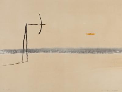 RIERA I ARAGÓ, Josep Maria (Barcelona, 1954).