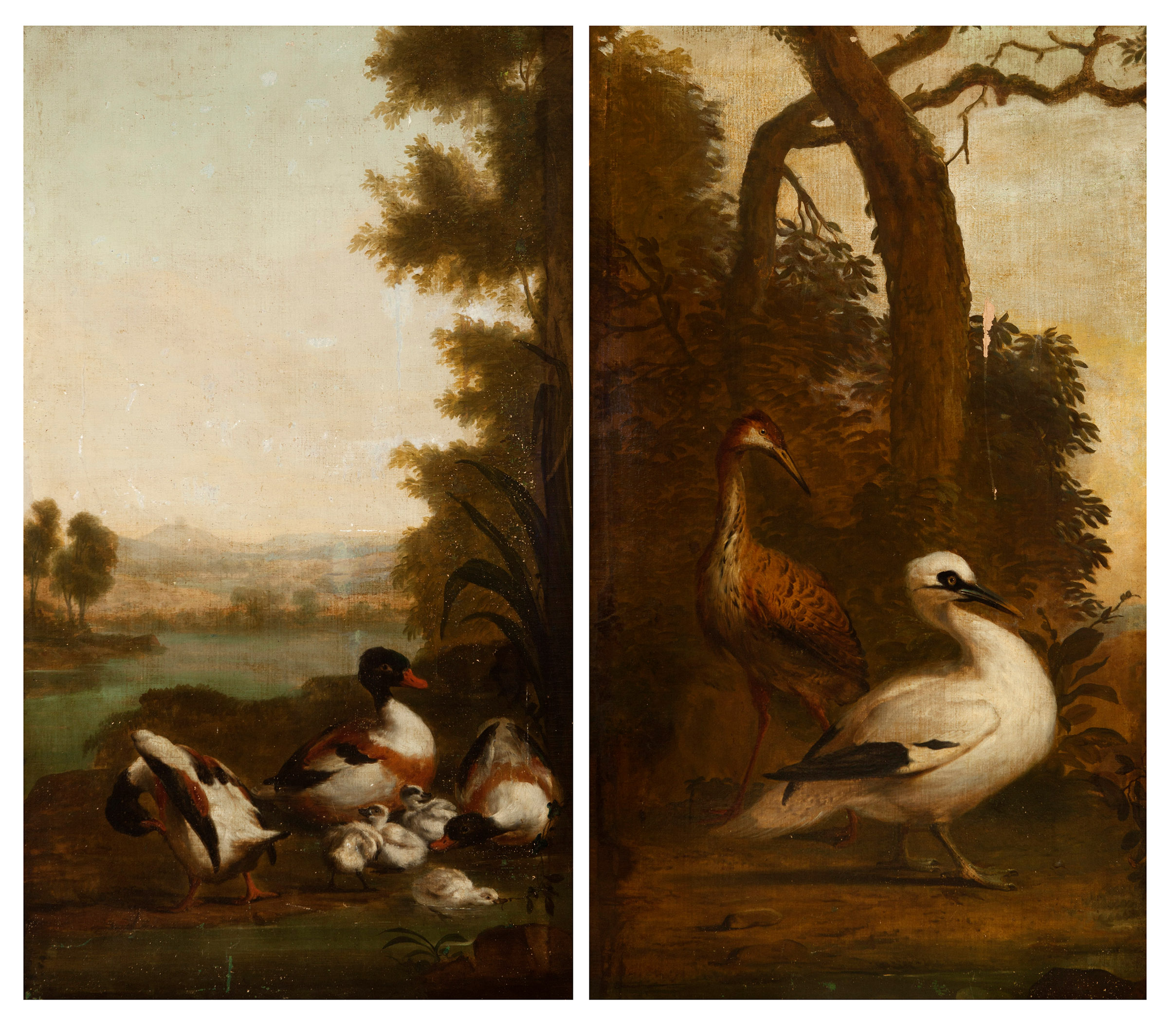 Escuela holandesa de finales del s. XVII. Pareja de cuadros de aves ...