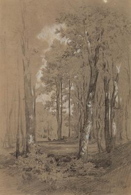 JOAQUIM VAYREDA VILA (Girona, 1843 - Olot, Girona, 1894).