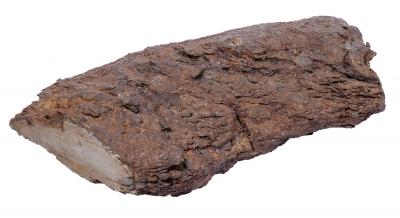 """Fragmento de meteorito. """"Argentina""""."""