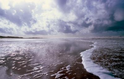 """De la serie """"La Playa"""". MARCO, Eduardo"""