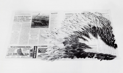 """Plumas"", 1998. COLLINS, Hannah"